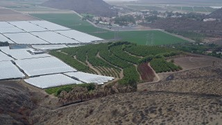 AX42_019 - 5K stock footage aerial video flyby orchard, crop fields and greenhouses, Camarillo, California