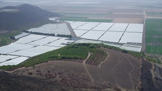 AX42_020 - 5K stock footage aerial video of flying by fields of orchard and greenhouses, Camarillo, California