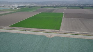 AX42_027 - 5K stock footage aerial video flyby a green crop field beside a country road, Camarillo, California
