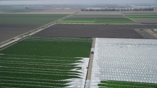 AX42_029 - 5K stock footage aerial video of flying over crop fields and greenhouses beside a country road, Camarillo, California
