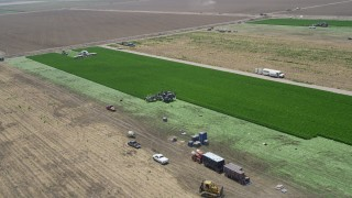 AX42_042 - 5K stock footage aerial video flyby farm workers working a crop field, Camarillo, California