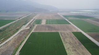 AX42_048 - 5K stock footage aerial video fly over farmland between country roads with light fog in the distance, Camarillo, California