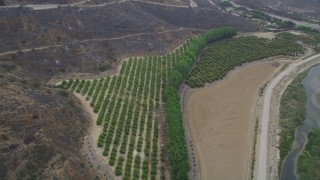 AX42_053 - 5K stock footage aerial video tilt to a bird's eye view of a small crop field and country road, Point Mugu, California