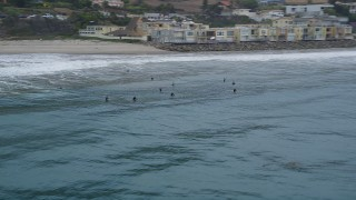 AX42_079 - 5K stock footage aerial video track a group of surfers in the ocean near a beach, Malibu, California