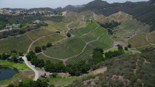 AX42_102 - 5K stock footage aerial video of flying by hillside vineyards, Malibu, California