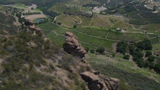 AX42_105 - 5K stock footage aerial video of flying by hilly vineyards in Malibu, California