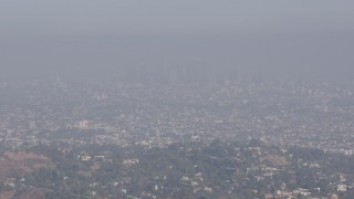 AX43_001 - 4K stock footage aerial video approaching and flying over a tree atop a hill to reveal Downtown Los Angeles, California