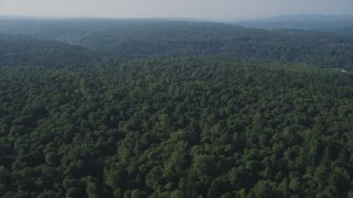 AX48_026 - 5K stock footage aerial video of flying by lush forest in Soaring Eagle Regional Park, Sammamish, Washington