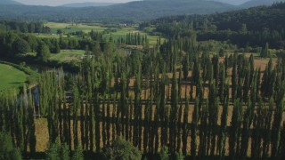 AX48_039 - 5K stock footage aerial video fly over tall trees and the Snoqualmie River to approach crop fields in Carnation, Washington