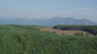 AX48_045 - 5K stock footage aerial video of flying by a clear cut area in forest in King County, Washington, near the Cascade Range