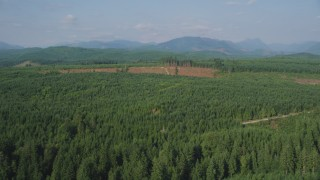 AX48_047 - 5K stock footage aerial video of flying over evergreen trees to approach a wide clear cut area, King County, Washington
