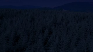 AX48_052_DFN - Aerial stock footage of 4K day for night color corrected aerial footage of evergreen trees, reveal a green hill in King County, Washington