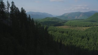 AX48_054 - 5K stock footage aerial video of flying over wooded mountain slope toward a clear cut area, King County, Washington