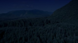 AX48_056_DFN - Aerial stock footage of 4K day for night color corrected aerial footage of evergreen forest to reveal a road in King County, Washington