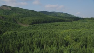 AX48_058 - 5K stock footage aerial video of flying over evergreen forest to reveal the South Fork Tolt Reservoir, Cascade Range, Washington