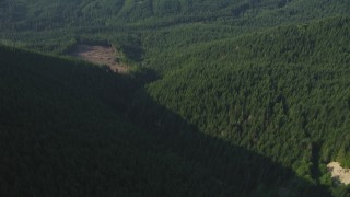 AX48_065 - 5K stock footage aerial video tilt from a bird's eye of a river through forest in the Cascade Range, Washington, reveal small logging area