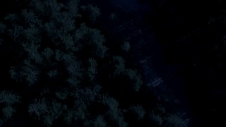 AX48_071_DFN - Aerial stock footage of Day for night color corrected aerial footage of a bird's eye view of a river and evergreen trees in King County, Washington