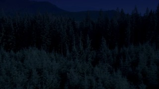 AX48_073_DFN - Aerial stock footage of Day for night color corrected aerial footage of flying low over an evergreen forest, King County, Washington