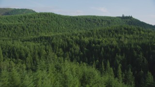 AX48_076 - 5K stock footage aerial video of flying over dense evergreen forest in King County, Washington