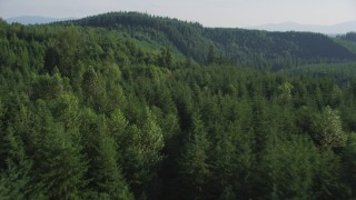 AX48_083 - 5K stock footage aerial video of flying over an evergreen forest and approach a mountain ridge in the Cascade Range, Washington