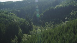 AX48_085 - 5K stock footage aerial video of evergreen forest at the base of a mountain in the Cascade Range, Washington