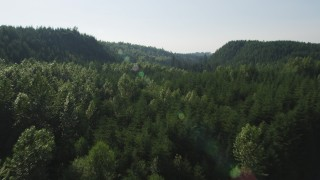 AX48_089 - 5K stock footage aerial video of flying over deciduous and evergreen trees, King County, Washington