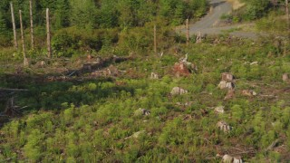 AX48_097 - 5K stock footage aerial video of tracking a deer running through the brush toward the forest, King County, Washington
