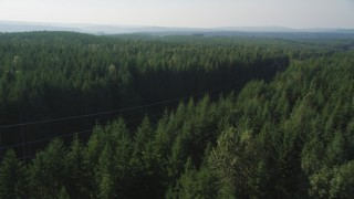 AX49_006 - 5K stock footage aerial video approach and fly over a long row of power lines through an evergreen forest in King County, Washington