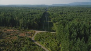 AX49_007 - 5K stock footage aerial video of following power lines past a clear cut area and through a forest, King County, Washington