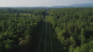 AX49_008 - 5K stock footage aerial video of following power lines through an evergreen forest, King County, Washington