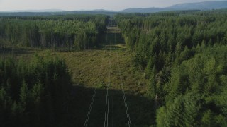 AX49_009 - 5K stock footage aerial video of following power lines through a forest, King County, Washington