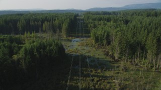 AX49_010 - 5K stock footage aerial video of following power lines through an evergreen forest, King County, Washington