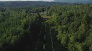 AX49_012 - 5K stock footage aerial video of following power lines through a forest past a small clear cut area, King County, Washington