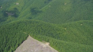 AX52_010 - 5K stock footage aerial video of reverse view of evergreen forests, reveal clear cut logging areas, Thurston County, Washington