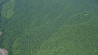 AX52_011 - 5K stock footage aerial video of reverse view of evergreen forests, and reveal a clear cut area, Thurston County, Washington