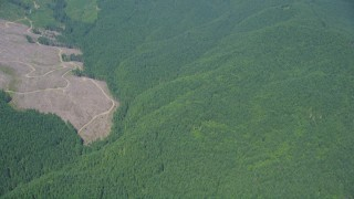 AX52_012 - 5K stock footage aerial video of reverse view of clear cut areas and wide evergreen forest, Thurston County, Washington