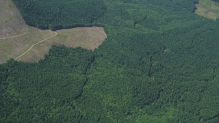 AX52_022 - 5K stock footage aerial video of evergreen forests beside clear cut logging areas in Lewis County, Washington