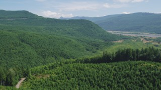 AX52_030 - 5K stock footage aerial video fly over evergreen forest and hills to approach North Fork Toutle River in Washington