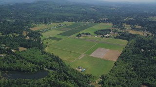 AX52_070 - 5K stock footage aerial video of farms and farm fields surrounded by trees, La Center, Washington
