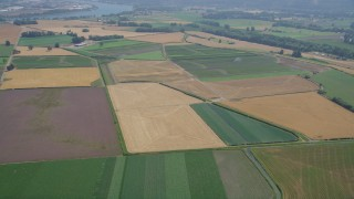 AX52_100 - 5K stock footage aerial video fly over crop fields in Riverview, Oregon