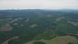 AX56_022 - 5K stock footage aerial video of wide expanse of evergreen forest and clear cut areas in Washington County, Oregon
