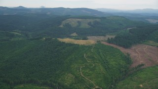 AX56_026 - 5K stock footage aerial video of logging areas in an evergreen forest in Washington County, Oregon