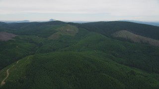 AX56_032 - 5K stock footage aerial video fly over forest to approach a hillside clear cut area in Washington County, Oregon