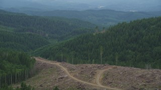 AX56_035 - 5K stock footage aerial video fly over a clear cut area with a view of evergreen forest in Clatsop County, Oregon