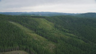 AX56_036 - 5K stock footage aerial video of hillside logging areas with new growth and evergreen forest in Clatsop County, Oregon