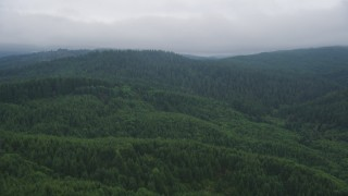 AX56_042 - 5K stock footage aerial video fly over evergreen forest on hills in Clatsop County, Oregon