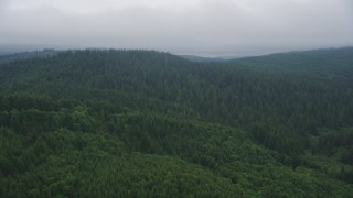 AX56_043 - 5K stock footage aerial video fly over wooded hills in Clatsop County, Oregon