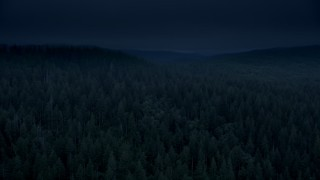 AX56_044_DFN - Aerial stock footage of Day for night color corrected aerial footage of evergreen forest, reveal a hillside clear cut area in Clatsop County, Oregon
