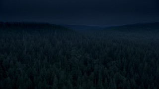 AX56_044_DFN3 - Aerial stock footage of 4K day for night color corrected aerial footage of vast evergreen forest, reveal a hillside clear cut area in Clatsop County, Oregon