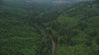 AX56_049 - 5K stock footage aerial video fly over State Route 202 through evergreen forest, Clatsop County, Oregon